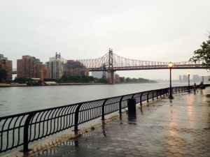 That is Roosevelt Island across the river.