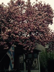 SpringWeekend2